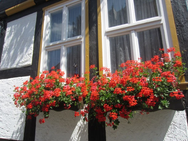 Traditional German window box.