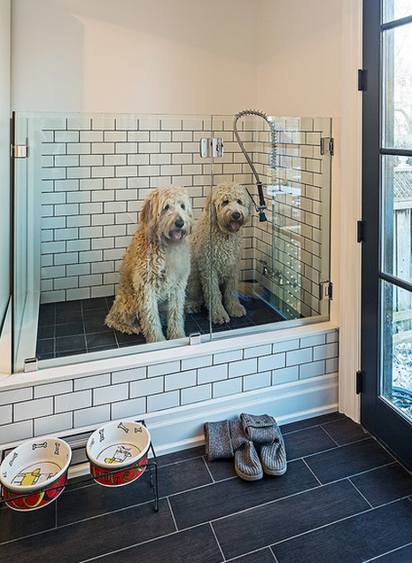 mudroom dog washing station